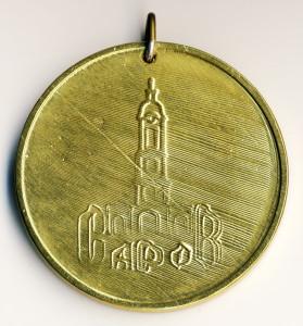 Саров 26-медаль наст-ДС №43 Теремок 2000 обр