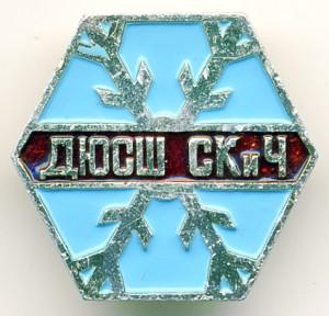 А308 ДЮСШ СКиЧ