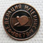 С504 ФЕДЕРАЦИЯ Н-ТЕННИСА КФК79
