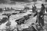 """Керченская катастрофа. К вопросу о """"полумиллионных"""" потерях Крымского фронта в мае 1942 года."""