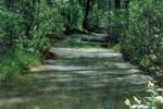 Изменение состояния реки Саровки и некоторых её притоков в историческом аспекте
