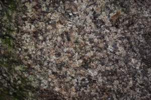 23) Структура «камня №5»_resize