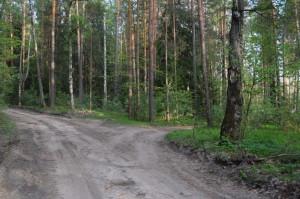 4) Перекресток грунтовых дорог_resize