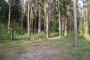 8) Поляна_resize