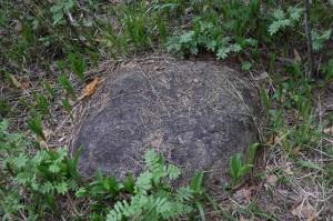 9) «Камень №1» с разных ракурсов
