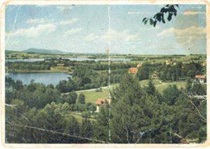 Фото 1 - Немецкая открытка 1945 г. 1