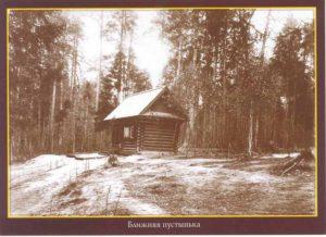 Фото 4 - Открытка Дмитриева - 1