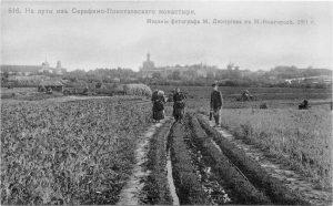 ponetaevka-dmitriev-816-gankin
