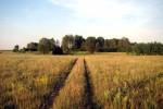 Малоизвестные сады и парки юга Нижегородской области