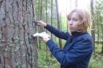 Кора деревьев как индикатор атмосферного загрязнения